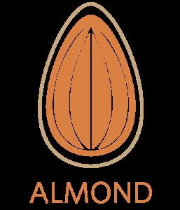 Almond Gestione catalogo prodotti