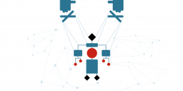 Header pagina Sviluppo algoritmi