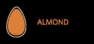Almond catalogo sales