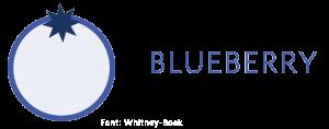 logo blueberry