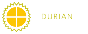 logo durian
