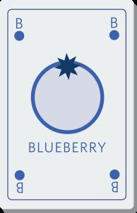 Blueberry il software per la GDO
